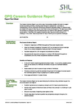 Careers Guidance Report