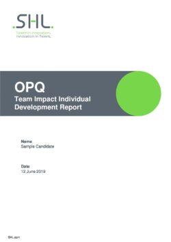 OPQ32 Team Impact Individual Development Report