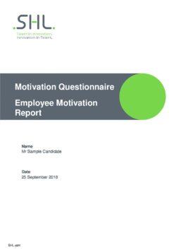MQ Employee Motivation Questionnaire